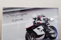 Plaque altu moto