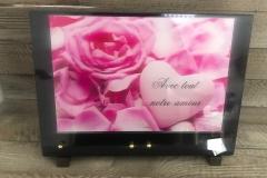 Plaque granit avec plaque altu rose